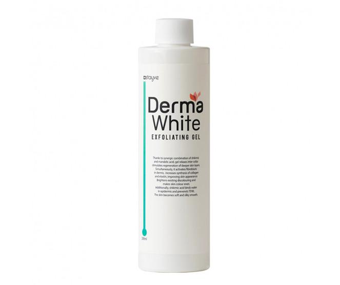 Stayve Derma White Exfoliating Gel 290 ml