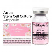 Stayve Aqua Stem Cell Culture Ampoule 10 × 8 ml