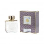 Lalique Pour Homme Equus EDP 75 ml M